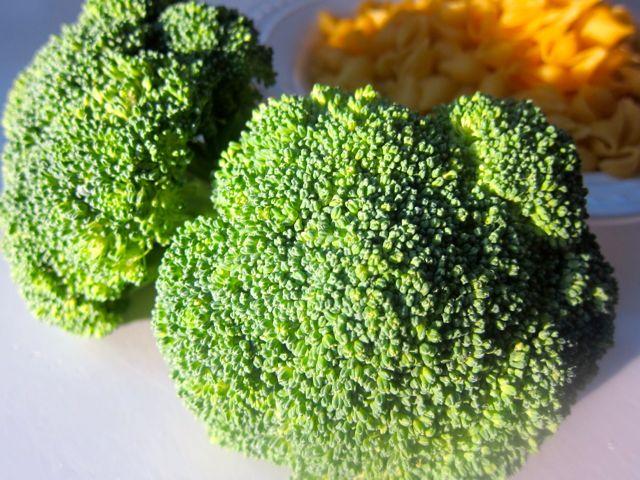 CauliflowerBroccoliPastaRecipe1
