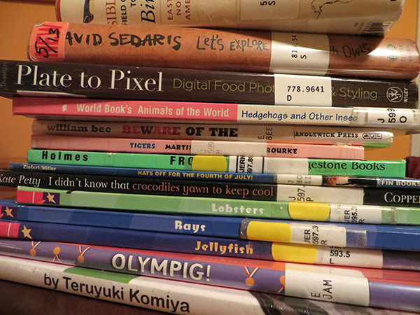 StackofLibraryBooksKids