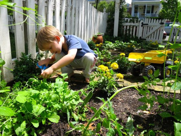 How to Know What to Grow in Your Edible Garden