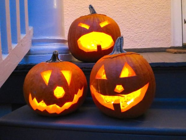 Growing Jack Olantern Pumpkins In Containers